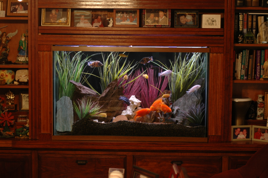 This Would Be Cool To Have Built In Fish Tank For The