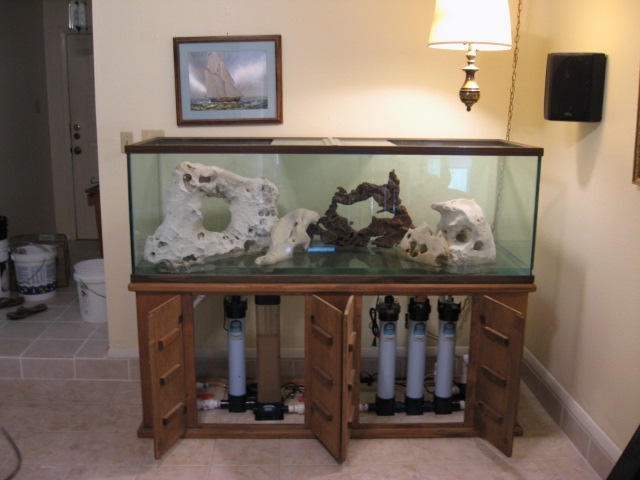 saltwater fish tank filter setup - Basic Saltwater ...